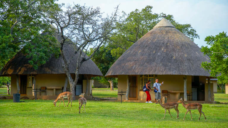 Private Small Group Kruger Park Safari
